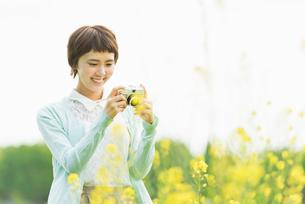 菜の花畑で写真を撮る若い女性の写真素材 [FYI02681113]