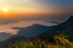 タイ チェンライ ドーイパタンの写真素材 [FYI02681151]