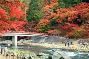 紅葉の香嵐渓の写真素材 [FYI02681152]
