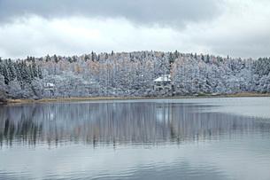 初冬の三本木沼の写真素材 [FYI02681159]