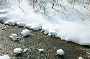 冬景の写真素材 [FYI02681203]