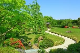 城南宮 桃山の庭とツツジの写真素材 [FYI02681227]