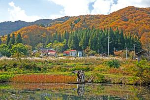 秋景の写真素材 [FYI02681312]