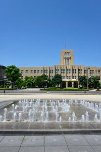 鹿児島市役所とみなと大通り公園の写真素材 [FYI02681322]