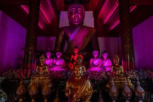 タイ チェンマイ ワット・パーカーオの写真素材 [FYI02681356]