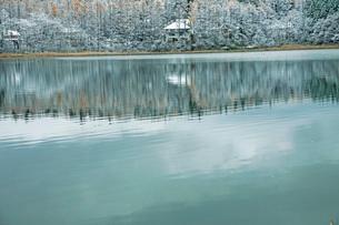 初冬の三本木沼の写真素材 [FYI02681405]