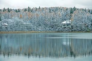 初冬の三本木沼の写真素材 [FYI02681436]