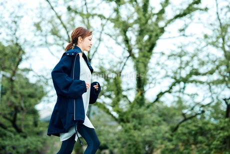 ランニングをする若い女性の写真素材 [FYI02681456]