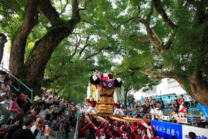 新居浜太鼓祭りの写真素材 [FYI02681564]