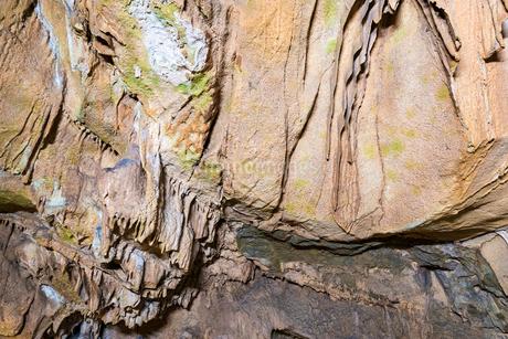 目白鍾乳洞の写真素材 [FYI02681648]