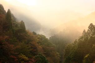 秋の別子ラインの写真素材 [FYI02681674]