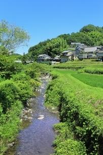 稲渕の集落と飛鳥川の写真素材 [FYI02681732]