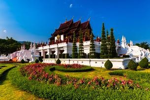 タイ チェンマイ ロイヤルパーク・ラチャプルックの写真素材 [FYI02681745]