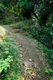 坂本龍馬脱藩の道 御幸の橋へ向かう道の写真素材 [FYI02681767]
