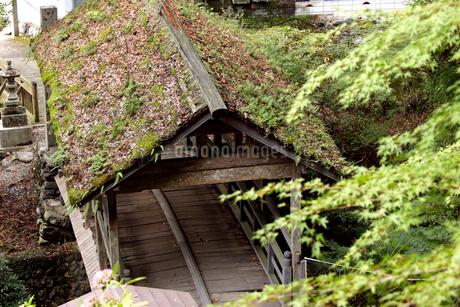 坂本龍馬脱藩の道 御幸の橋の写真素材 [FYI02681865]