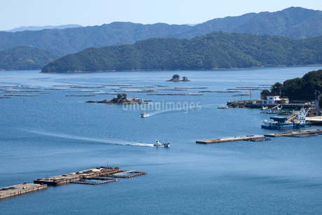 宇和海の水荷浦港の魚養殖の写真素材 [FYI02681896]