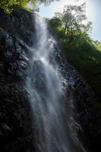 春の白猪の滝の写真素材 [FYI02681979]