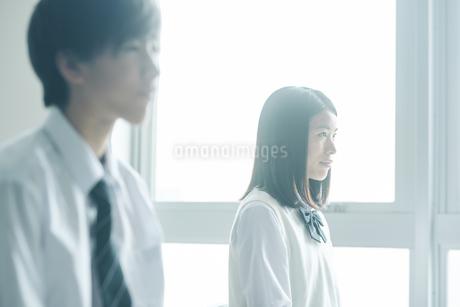 教室で授業を受ける女子高生の写真素材 [FYI02682140]