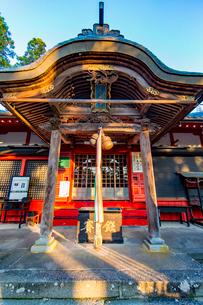 篠山の千本鳥居と言われる王地山稲荷神社の写真素材 [FYI02682157]