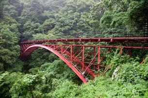 渓谷の赤い橋の写真素材 [FYI02682313]