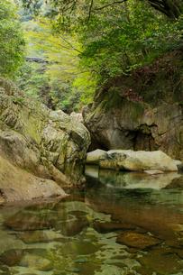 春の鈍川渓谷の写真素材 [FYI02682330]