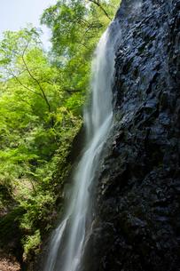 春の白猪の滝の写真素材 [FYI02682406]