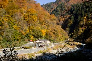 秋の黒部峡谷 祖母谷温泉の写真素材 [FYI02682453]