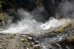 秋の黒部峡谷 祖母谷温泉の源泉地帯の写真素材 [FYI02682468]