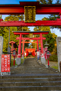 篠山の千本鳥居と言われる王地山稲荷神社の写真素材 [FYI02682517]