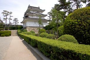 讃岐高松城跡の艮櫓の写真素材 [FYI02682573]