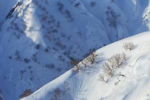 八方尾根より険しい残雪期の景色の写真素材 [FYI02682586]
