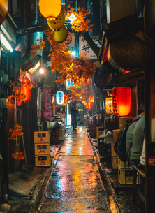 秋のデコレーションの思い出横丁を傘をさして歩く人の写真素材 [FYI02682675]