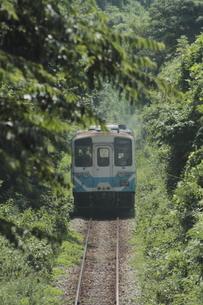 深緑の中を走るローカル列車の写真素材 [FYI02682677]