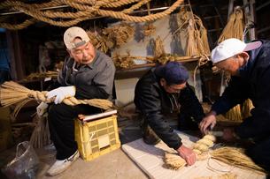 冬の農閑期にしめ縄作りする70~80代男性の写真素材 [FYI02682856]