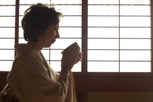 茶道を嗜む50代女性の写真素材 [FYI02682903]