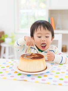プリンを食べる男の子の写真素材 [FYI02683188]