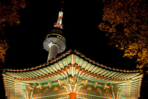 Nソウルタワーと八角亭の夜景 韓国の写真素材 [FYI02683451]
