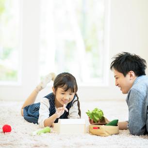 おもちゃで遊ぶ親子の写真素材 [FYI02683594]