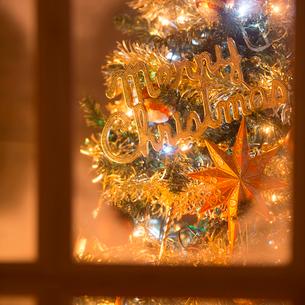 窓枠とクリスマスツリーの写真素材 [FYI02683959]