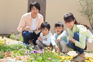 ガーデニングをする4人家族の写真素材 [FYI02685418]