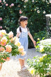 バラが咲き噴水がある庭で遊ぶ女の子の写真素材 [FYI02685692]