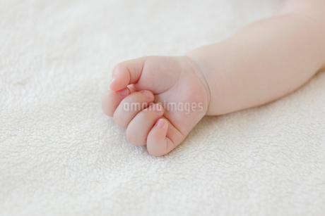 ベッドで眠る赤ちゃんの手の写真素材 [FYI02685795]