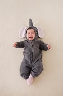 ゾウの着ぐるみを着た赤ちゃんの写真素材 [FYI02685858]