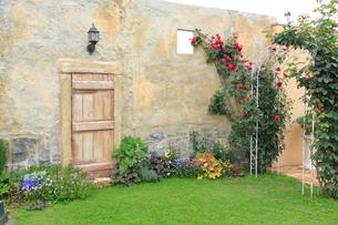 バラの咲く庭の写真素材 [FYI02685903]
