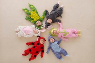 着ぐるみを着て円形に並ぶ赤ちゃんの写真素材 [FYI02685998]