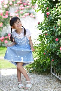 バラの咲く庭でポーズをとる女の子の写真素材 [FYI02686061]