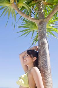 アカタコノキに寄りかかりながら空を見上げる水着女性の写真素材 [FYI02686525]