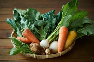 無農薬野菜盛り合わせの写真素材 [FYI02686924]