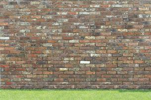 広い壁と芝生の合成向け背景素材の写真素材 [FYI02686976]