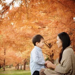 向い合う母親と男の子と紅葉の写真素材 [FYI02687163]
